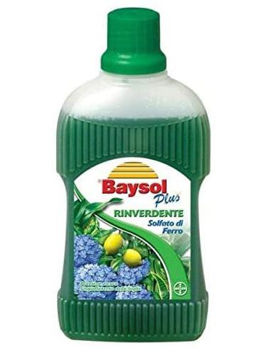 Bayer Baysol Rinverdente 500 ml